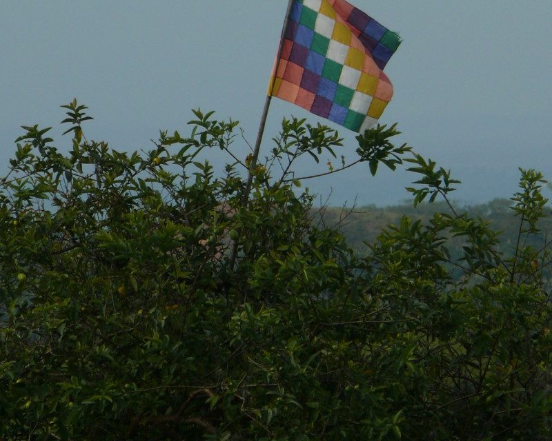 Llamamiento urgente por el Cauca ¡Paremos la masacre!