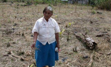 Incumplimiento de acuerdo pone en riesgo la pervivencia del pueblo Awá