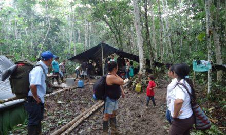 Editorial: Erradicación forzada y desplazamiento en el putumayo