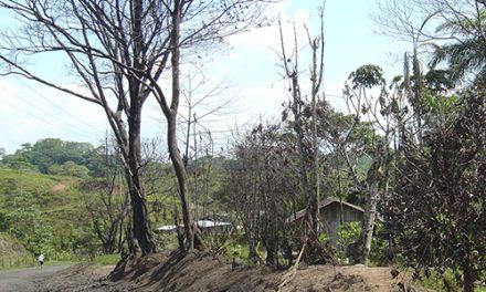 "«APOCALIPSIS AHORA"": PLAN COLOMBIA"