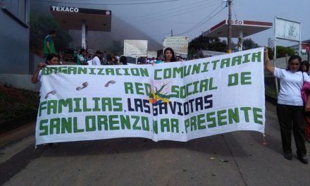 En Nariño las mujeres campesinas también conmemoraron el Día de la Mujer Trabajadora