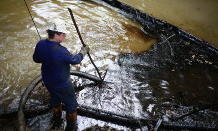 Lizama: La negligencia convertida en tragedia ambiental