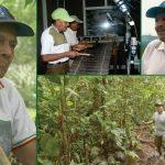 Mayor Santiago Pascal: Un legado Awá de sabiduría, autonomía y defensa de la vida