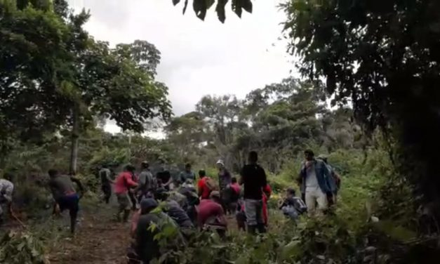 Operaciones de erradicación forzosa en Tumaco profundizan crisis por Covid 19 y enciende alarmas ante agresión desmedida que recuerda masacre de El Tandil