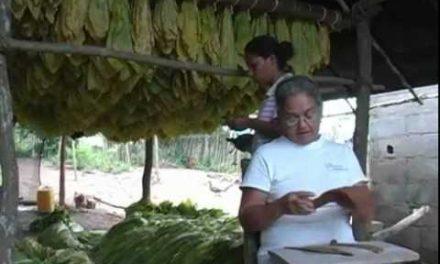 SOMOS TIERRA – Memoria en Montes de María y Catatumbo