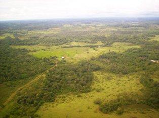Desaparecidos 3 Indígenas del pueblo Awá