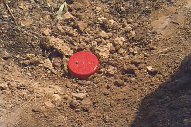 Otra víctima de minas antipersona