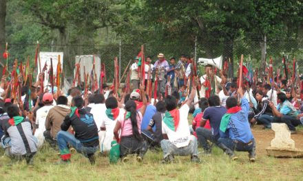 Atentado criminal contra misión humanitaria, autoridades  y guardias indígenas en Jambalo Cauca