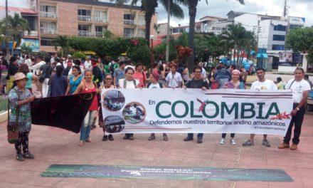 La Amazonía y la apuesta por su sobrevivencia