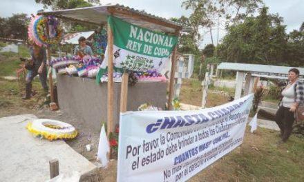 En estado de alerta El polvorín de la erradicación en Nariño