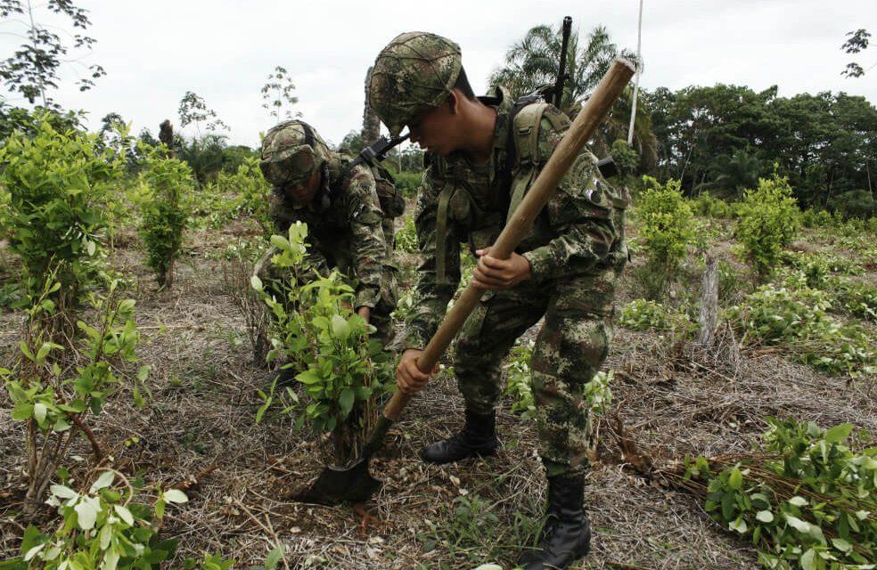 Comunidades de Puerto Asís piden al Gobierno diálogos por incumplimientos en sustitución de cultivos