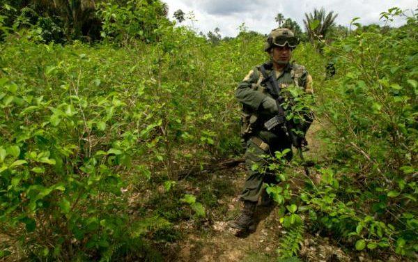 Denuncia pública: Continuan las operaciones de erradicación forzosa en el Putumayo con agresiones en contra de las comunidades