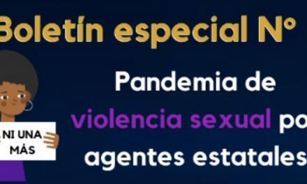 Boletín 8  CCEEU– Pandemia por violencia sexual y violencias basadas en género por agentes estatales
