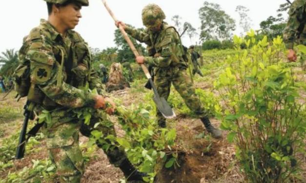 Organizaciones campesinas de Putumayo rechazan declaraciones de Ejército Nacional