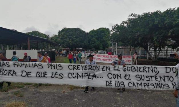Comunicado público: Comunidades de Putumayo exigen frenar erradicaciones violentas y reactivar diálogo con campesinado